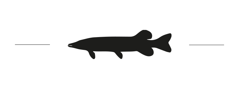 logo brochet lac foxen